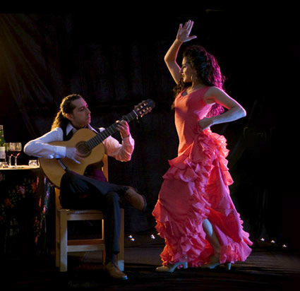 Amor Flamenco Group and Show